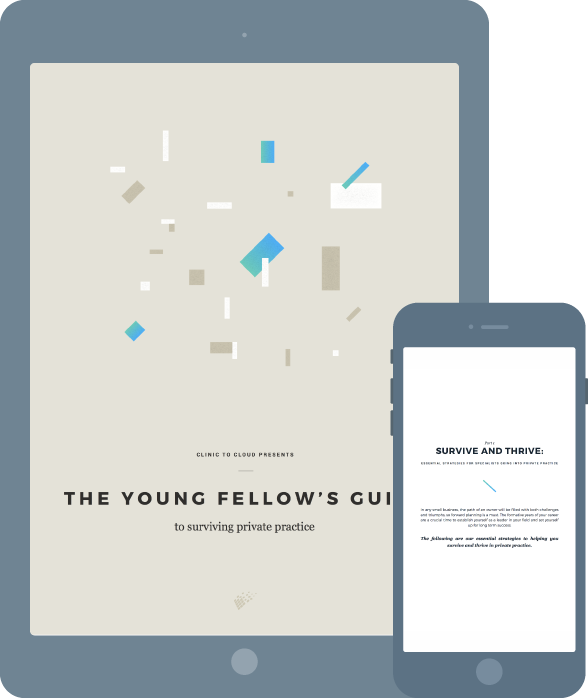 The Young Fellow's Guide